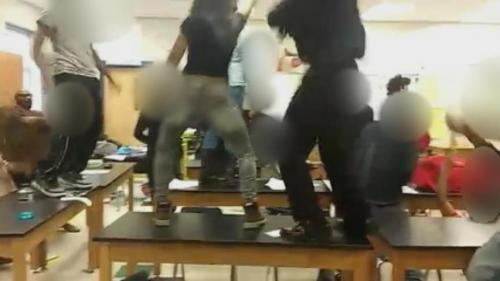 [VIDEO] Too Much Truth – Teacher Gets Fired Over Harlem Shake